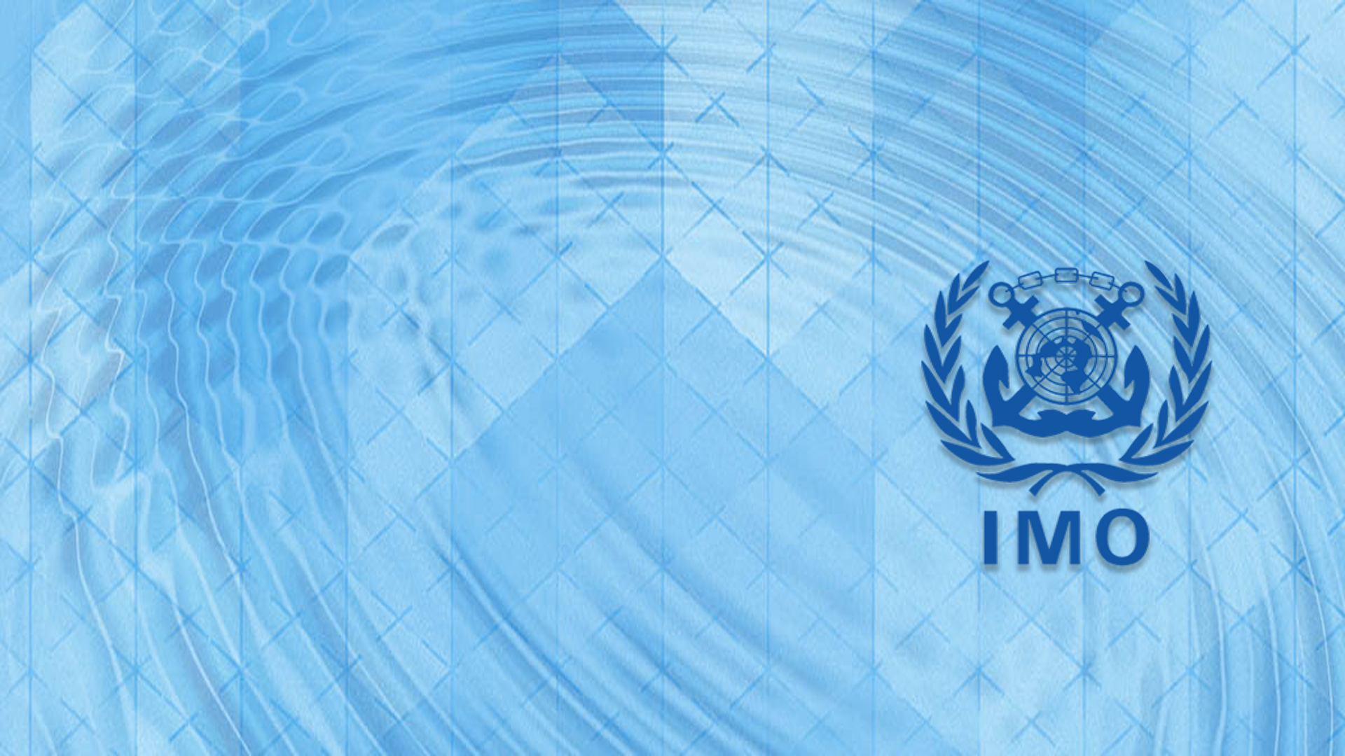 IMO Meeting Overview